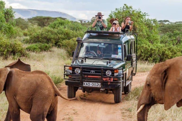exploring the African savannah on safari game drive
