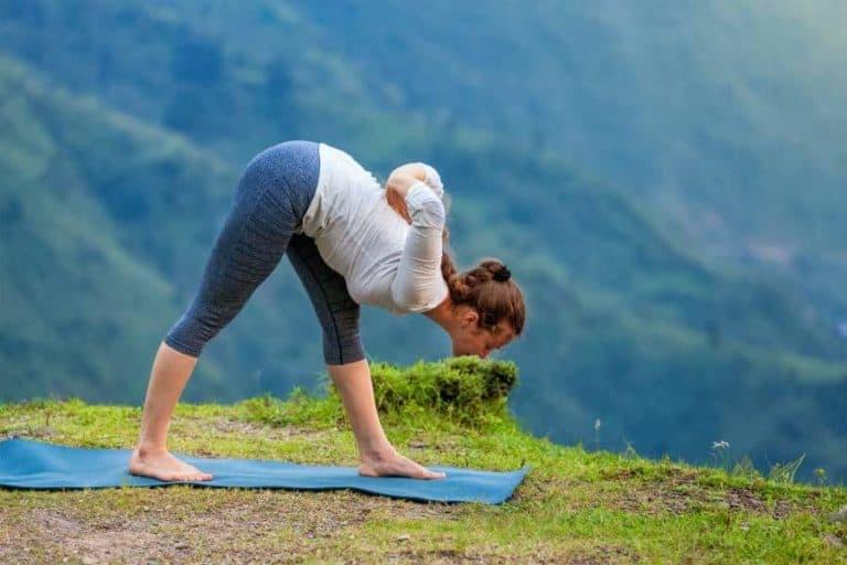 yoga Himachal Pradesh, India