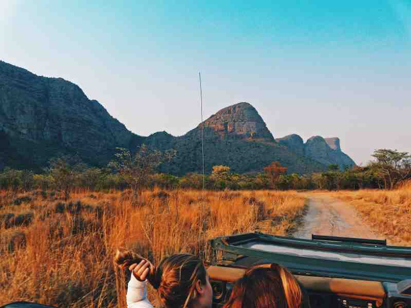 on the back of a jeep on safari