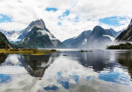 well known fjords of New Zealand.