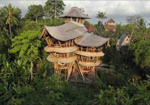 tree house bali (Small)